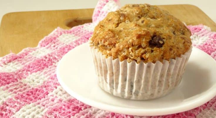 Single-Serving Skinny Chocolate Chip Muffin