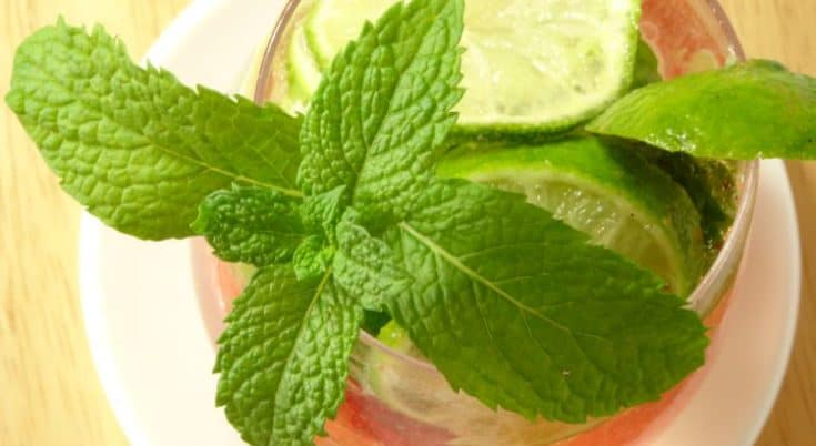 Strawberry #Mojito #Mocktail #Recipe: this non alcoholic strawberry mojito is a #healthy alternative to the traditional cocktail and will help you drink more water. Since it doesn't include alcohol, you can drink it any time of day!