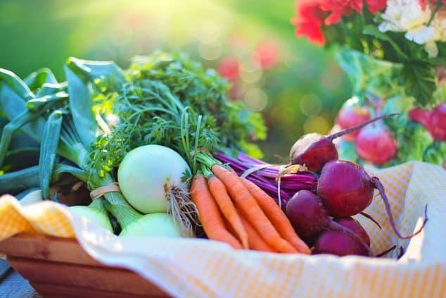 Basket of low FODMAP vegetables bathed in low sunlight